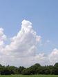 こういう雲が撮りたかった!