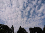 ふわふわの雲が