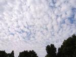 夏の雄大な雲から