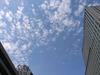 ビルからビルへと渡る雲にも秋の気配が