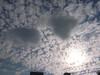 太陽が羊雲と遊んでると思ったらクラゲも登場?