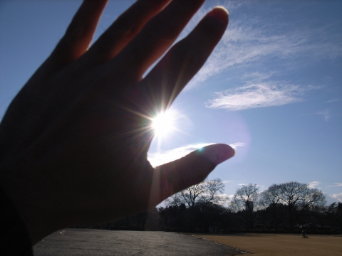 太陽に手をかざして