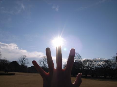 太陽を捕まえようと