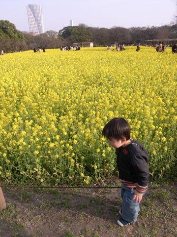 菜の花の前で記念撮影
