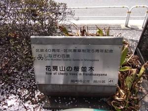 R8012026.JPG
