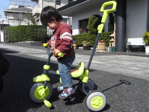 三輪車でたかいたかい